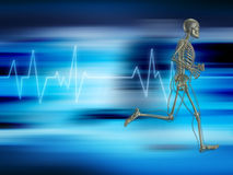 Running skeleton. On a background showing heart rate Royalty Free Stock Photography