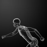 Running skeleton by X-rays Stock Photography