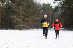 Running In The Snow 11 Stock Image