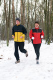 Running In The Snow 3 Royalty Free Stock Images