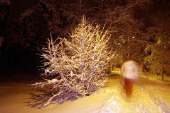 Running in snow Royalty Free Stock Images