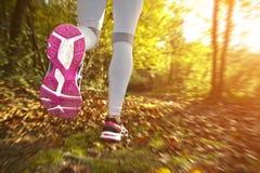 running solnedgång för flicka Royaltyfri Fotografi