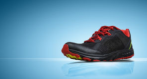 Running Sport Shoes Royalty Free Stock Image