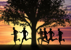 Running sports. Competition athletes runners Royalty Free Stock Images