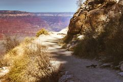 Running squirrel on a path in the Grand Canyon Stock Photography