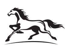 Running stallion Royalty Free Stock Photo