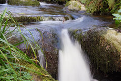 Running stream. Long exposure of running stream with lush green vegetation royalty free stock photo