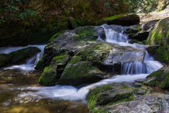 A Running Stream in The Great Smoky Mountains National Park Royalty Free Stock Image