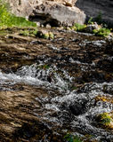 Running Stream. Logan Canyon stream on chilly spring day Royalty Free Stock Image