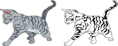 Running stripy cat Stock Photos