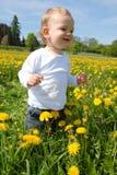 Running Toddler Royalty Free Stock Photos