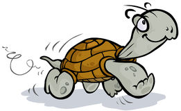 Running Tortoise. Royalty Free Stock Image