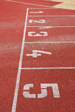 Running track. Lines with starting numbers Stock Photography