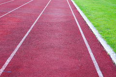 Running track and green grass Stock Image
