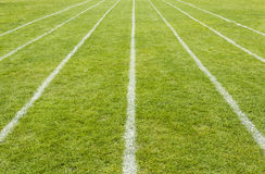 Running track lines marked on the grass Stock Photography