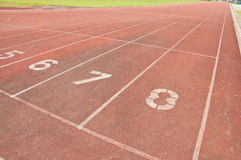 Running track number eight Stock Photo