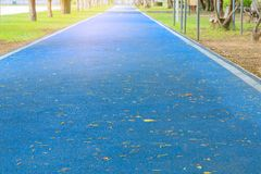 Running track in runner rubber cover blue public park. for jogging exercise. Health lose weight concept copy space add text, select focus with shallow depth of royalty free stock photos