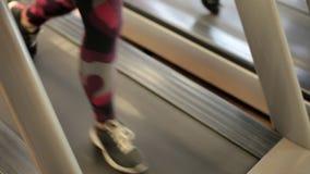 running treadmill Flickor i idrottshallen går på trampkvarnen Två sportflickor på trampkvarnen ben close upp arkivfilmer