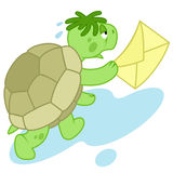 Running turtle. Funny turtle run to deliver a letter Royalty Free Stock Photos