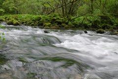 running vatten Royaltyfri Fotografi