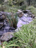 running vatten Royaltyfria Bilder