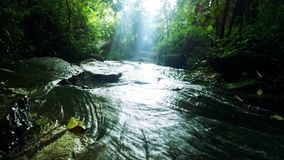 running vatten Arkivfoton