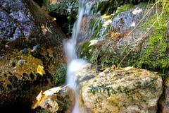 running vatten för ner mossy rocks Fotografering för Bildbyråer