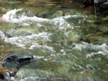 Running water. The water of a stream running free Royalty Free Stock Images