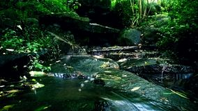 Running water. And filtered through soil , it falls on the rocks and forms a small stream Royalty Free Stock Photo