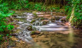 Running water in the forest. Across the rocks in a green natural environment Royalty Free Stock Image