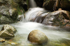 Running water of a mountain stream Royalty Free Stock Images