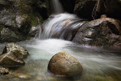 Running water of a mountain stream Royalty Free Stock Photos