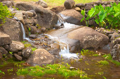 Running Water over Rocks. Beautiful and small natural waterfall occurring on the rocks of Maui Hawaii royalty free stock photography