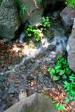 Running water over rocks Royalty Free Stock Photos