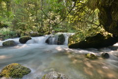 Running Water. Small river in a forest, interlaken, switzerland Royalty Free Stock Image