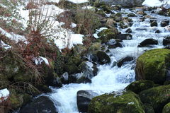 Running water stream in the town of Triberg royalty free stock image