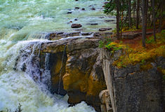 Running water Sunwapta Falls from Sunwapta River in National Park Jasper, Alberta, Canada Stock Image
