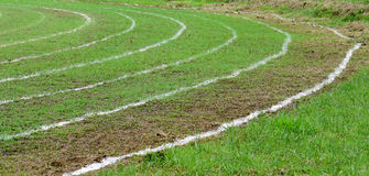Running on white lines track. In football Sports stadium Royalty Free Stock Images