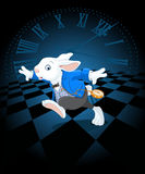 Running White Rabbit Stock Photos