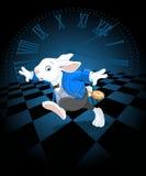Running White Rabbit Stock Photos