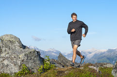 running wild Fotografering för Bildbyråer