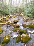 Running wild. Smokey mountain river. Gatlinburg Tennessee Royalty Free Stock Image