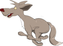 Running wolf Royalty Free Stock Image