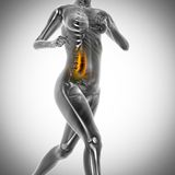 Running woman radiography scan image Royalty Free Stock Photography