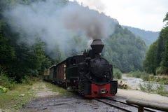 Running wood-burning locomotive of Mocanita Stock Image