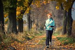 Running. Young woman running in the park Royalty Free Stock Photos