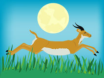 Runninging Antilope Lizenzfreies Stockbild
