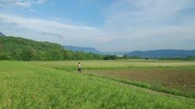 Runns de la mujer joven a través de un prado en la opinión aérea de la primavera temprana almacen de metraje de vídeo