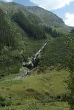 Córrego 1 da montanha de Colorado Fotografia de Stock Royalty Free