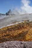 Runoff, Grand Prismatic Spring. Yellowstone National Park Royalty Free Stock Image